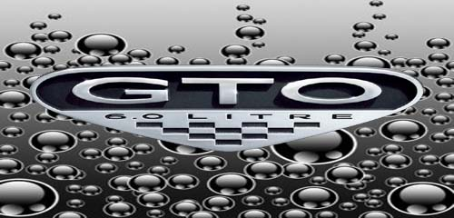 GTO logo002.jpg