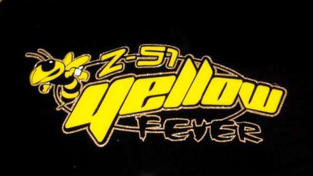 Yellow Fever1 Avatar.jpg