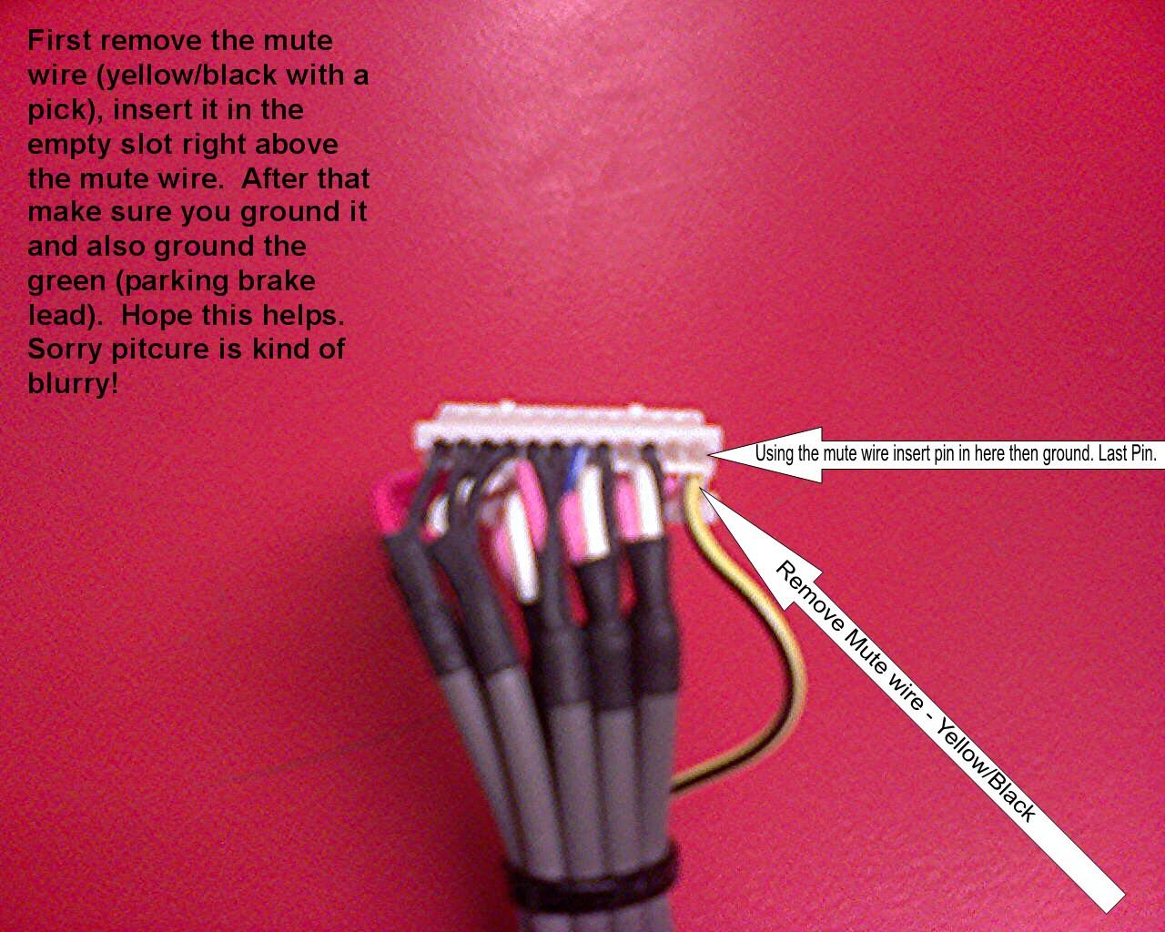 Wiring Pioneer Avh Mute Wire Data Wiring Diagrams \u2022 Pioneer Satellite  Radio Connector Pinout Pioneer Wiring Harness Mute Wire